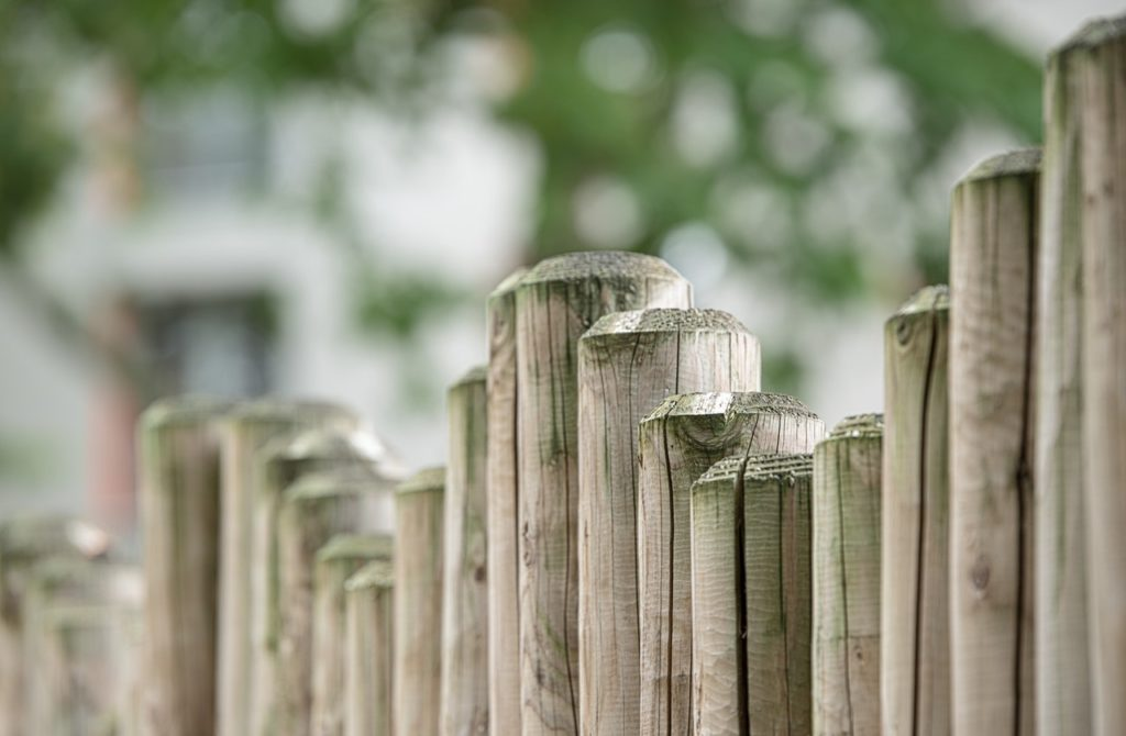 photo of bamboo fence in garden